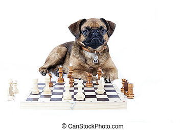 Brabant chess