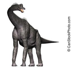brachiosaurus dinosaur full view - Brachiosaurus Full body...