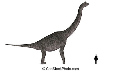 Brachiosaurus Size Comparison - Illustration of a comparison...