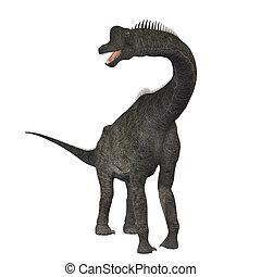 Brachiosaurus =