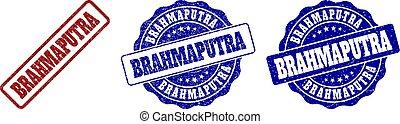BRAHMAPUTRA Grunge Stamp Seals - BRAHMAPUTRA scratched stamp...