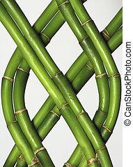 Braided Bamboo