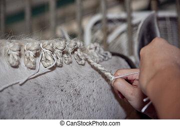 hands braiding a horse's mane