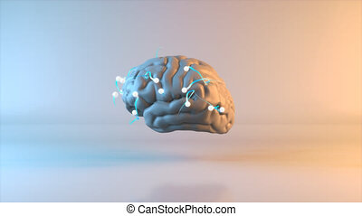 Brain - 3D Animation