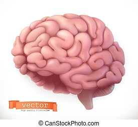 Brain. 3d vector icon