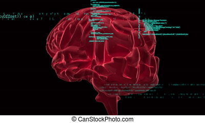 Brain and codes