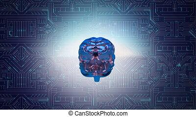Brain and digital circuit