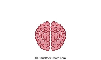 Brain and knowledges HD animation