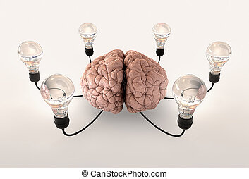 Brain And Lightbulb Imagination - A regular brain encircled...