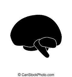 Brain black color icon . - Brain it is black color icon .