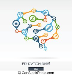 Brain concept for education, learning, knowledge, graduation
