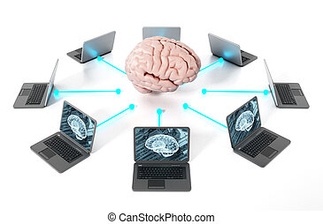Brain connected to the laptop computers. 3D illustration