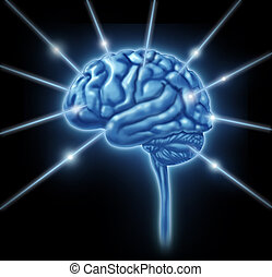 Brain connections intelligence lobe sections divisions of...