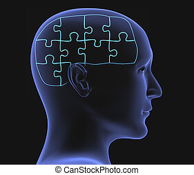 Brain in the form of the combined puzzle