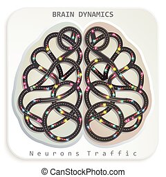 Brain Dynamics - Vector illustration of a human brain in the...