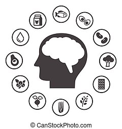 Brain Foods to Boost Memory, Healthy food and lifestyle...