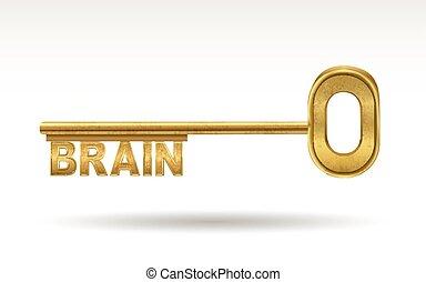 brain - golden key