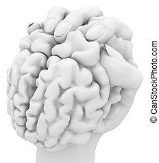 Brain Grasp, White
