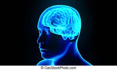 Brain hologram rotating sparks lightning electricity headache neuron loop 4k