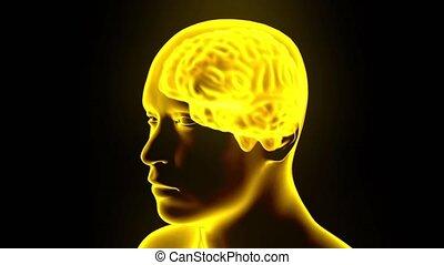 Brain hologram rotating sparks lightning electricity...