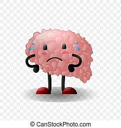 Brain. Human internal organ realistic - Brain. Human ...