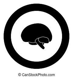 Brain icon black color in circle vector illustration ...