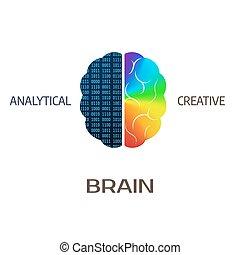Brain icon. Left brain part - analytical. Right hemisphere of brain - creative. Vector illustration