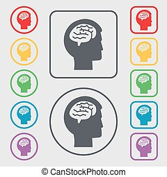 Brain icon sign. symbol on the Round and square buttons with frame. Vector