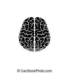 Brain icon. vector illustration black on white background