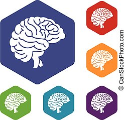 Brain icons set