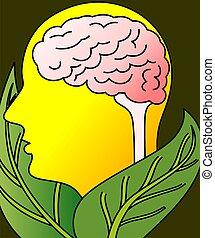 brain - Illustration of leaf with brain model