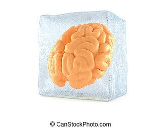 Brain in ice cube