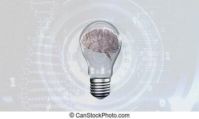 Brain inside a light bulb