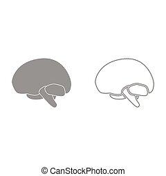 Brain it is icon . - Brain grey set it is icon . Flat style...