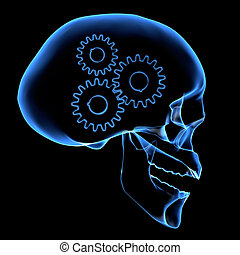 Brain mechanism - X-ray of a head