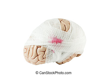 Brain model with gauze wrapping in oblique view