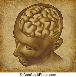 Brain On a Grunge Background - Brain intelligence mind on an...