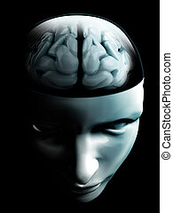 brain on open human face