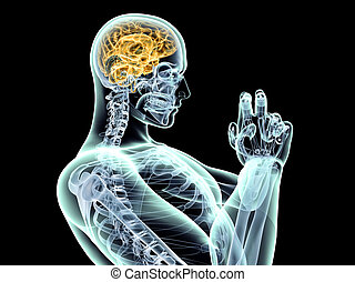 Brain Power - Power of the mind. 3D rendered illustration....