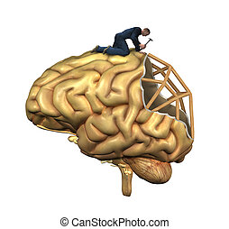 Brain Reconstruction - A worker is in the process of...