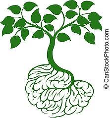 Brain roots tree