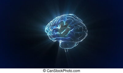 X-ray Brain to represent the theme of human, biology, intelligent, technology etc This is the best way for any video production, TV Broadcasting, web animation etc.