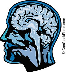 Brain Scanning Imaging Side - Retro style illustration of a...