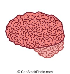 brain silhouette color with side view
