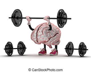 brain sports doing exercises