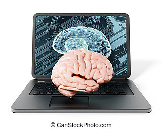 Brain standing on laptop computer keyboard. 3D illustration
