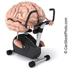 Brain - Fun brain