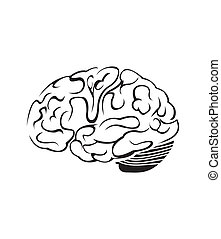 Brain Symbol Vector Illustration