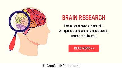 Brain test vector concept