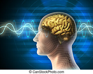 Brain waves - Human head and brain. Different kind of...